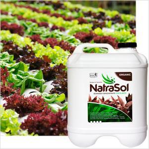 Natrasol Premium Seaweed Conc 1.25lt