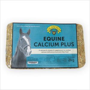 Ols Equine Calcium Plus Salt Block 20kg