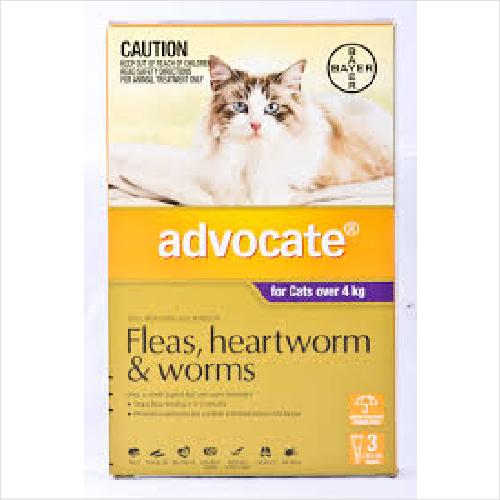 Bayer Advocate Cat 4kg+ 6pack