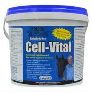 Kohnke Cell Vital 3.5kg