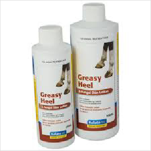Kelato Greasy Heal Fungal Lotion 500ml
