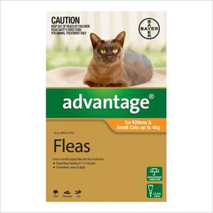 Bayer Advantage Cat 0-4kgs Small 4 Pack