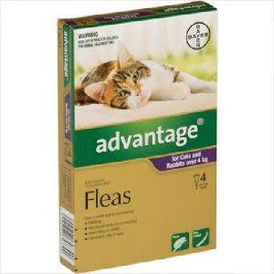 Bayer Advantage Cat 4kgs + Large 4 Pack