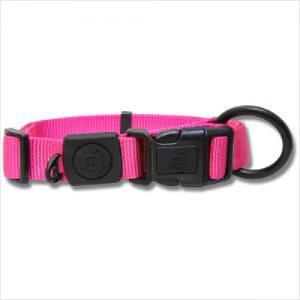Bb Nylon Dog Collar With Logo 15-25cm
