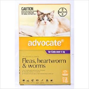 Bayer Advocate Cat Over 4kg Single