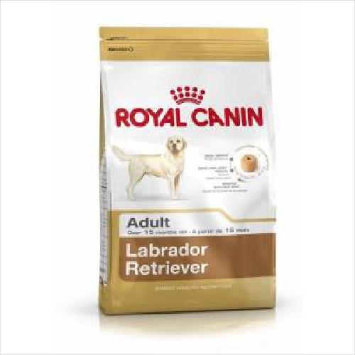 Rc Dog Labrador Retriever Adult 12kg