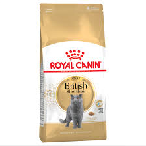 Rc Cat Fbn British Shorthair 2kg