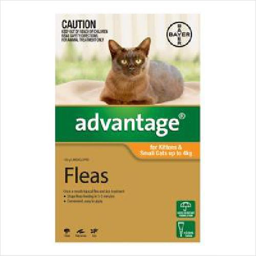 Bayer Advantage Cat 4kg Large 6pk