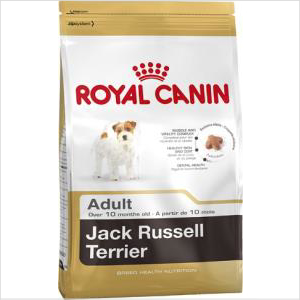 Rc Dog Jack Russell 7.5kg