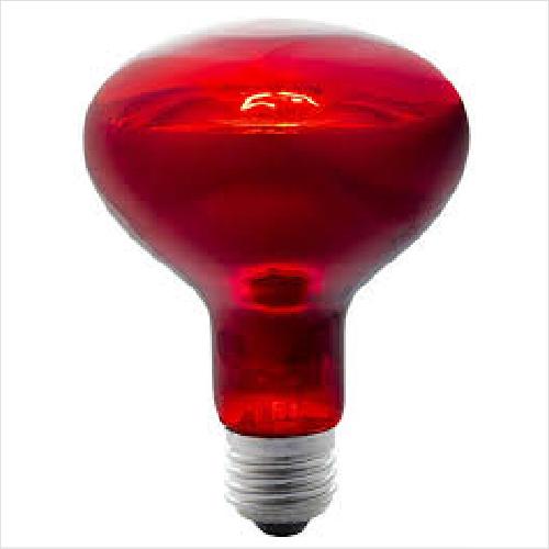 Kongs Hal 28w Heat Lamp
