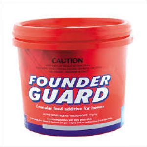 Virbac Founder Guard 1kg