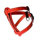 Ezydog Harness Cp S Red