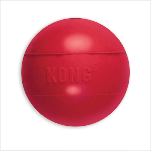 Kong Dog Ball Small