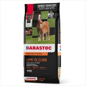Rid Ker Low Gi Horse Stud Cube 20kg